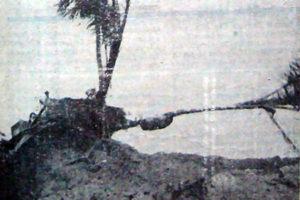 La piste ouverte permet l'accès routier aux véhicules tous terrains. © Archives départementales de Guyane.