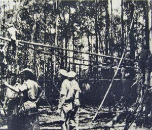 Construction d'un carbet à Montsinéry (1966). (c)40 ans de service militaire adapté en Guyane (1961-2001), Panazol, Editions Lavauzelle, 2002